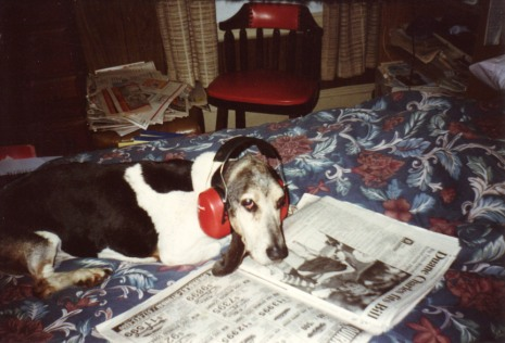 Barney reading the sports page and listening to his favorite 'rap' artist.